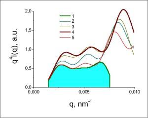 Fig. 5. Funzione d'approssimazione per i campioni di poliuretano 1-5